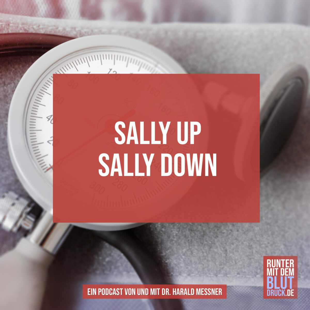 Sally up Sally down
